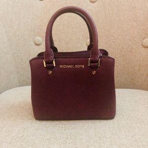 Michael Kors Mini Clutches bag
